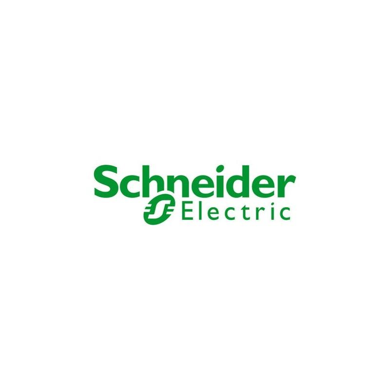 Schneider Electric AS-B863-132 ASB863132 - 800-Series I-O Module, Discrete In, 24 Vdc Supr. Wire, 32 pnts, 8 pnts per common